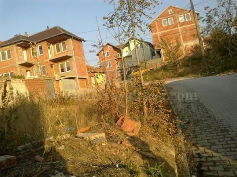 Shes 2 ari toke / Prishtine
