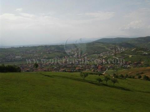 Shes 4 hektar toke / Prishtine