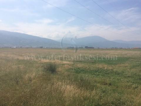 Shes 25 ari toke / Prizren