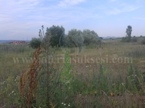 Shes 1 hektar e 77 ari toke / Lipjan
