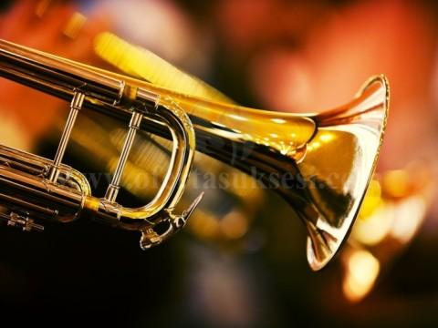 Kurs per muzike - Trumpete, Piano si dhe te gjitha lendet teorike muzikore.