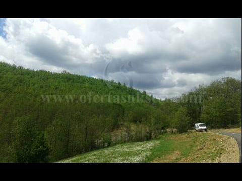 Shes 3.5  hektare toke / Batllave-Prishtine