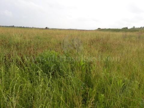 Shes 4.5 hektar toke afer Marigona Rezidence fshati Skulan