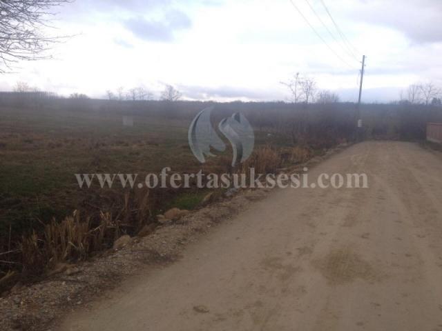 Shes 2 hektar e 50 ari truall / Besian (ishpodujev)