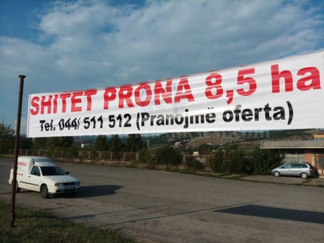 Shes 8.5 hektar toke / Dardan-Kamenice