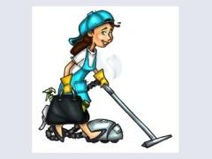 Bejm pastrimin e shtepive-banesave / objekteve