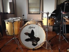 "Shes baterit-tupana ""Ludwig Accent Custom"""