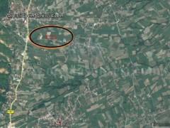 Shes 1.54 hektar toke/ Izniq - Deçan