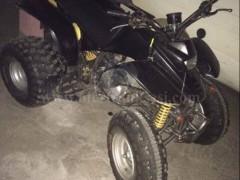 Shes motorr Standart Snake 200