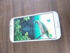 Shes Samsung S4