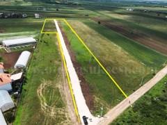 Shes 1.21 hektar toke / Prishtine